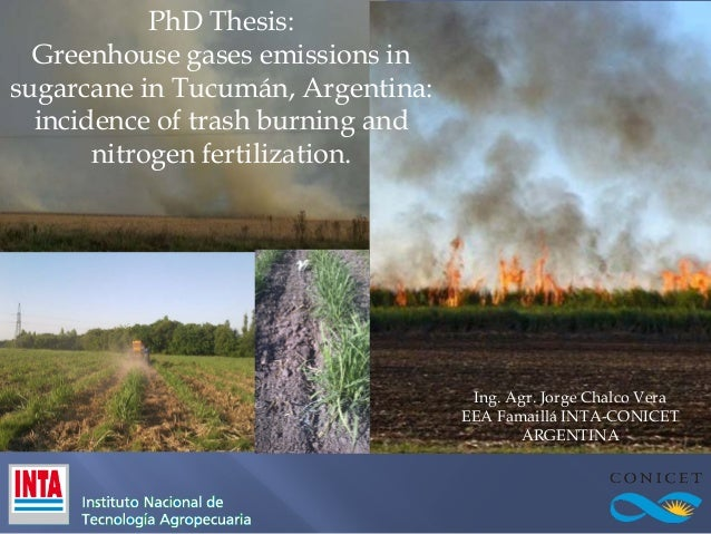 PhD Thesis: Greenhouse gases emissions in sugarcane in Tucumán, Argentina: incidence of trash burning and nitrogen fertili...