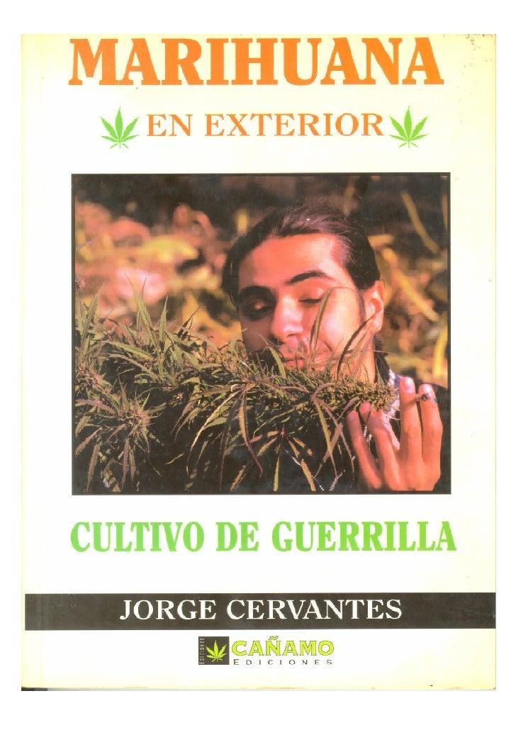Marihuana en exterior Cultivo de guerrilla     Jorge Cervantes     Marihuana en exterior: Cultivo de guerrilla Jorge Cerva...