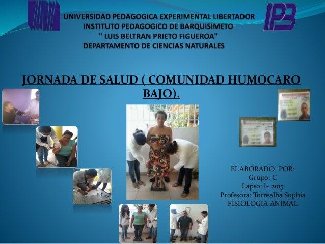 JORNADA DE SALUD ( COMUNIDAD HUMOCARO BAJO). ELABORADO POR: Grupo: C Lapso: I- 2015 Profesora: Torrealba Sophia FISIOLOGIA...