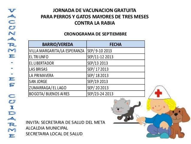 JORNADA DE VACUNACION GRATUITA PARA PERROS Y GATOS MAYORES DE TRES MESES CONTRA LA RABIA BARRIO/VEREDA FECHA VILLA MARGARI...