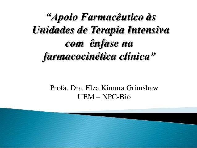"""Apoio Farmacêutico às Unidades de Terapia Intensiva com ênfase na farmacocinética clínica"" Profa. Dra. Elza Kimura Grimsh..."