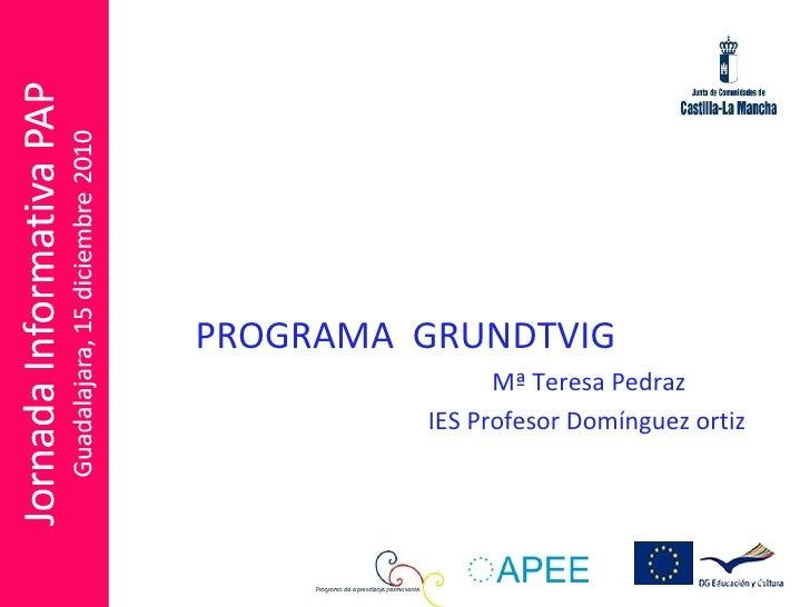 PROGRAMA  GRUNDTVIG   Mª Teresa Pedraz IES Profesor Domínguez ortiz