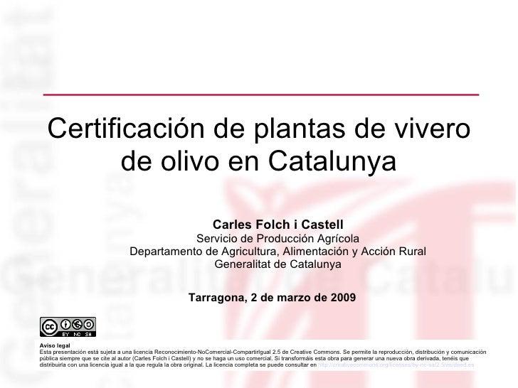 Certificación de plantas de vivero de olivo en Catalunya <ul><ul><li>Carles Folch i Castell </li></ul></ul><ul><ul><li>Ser...