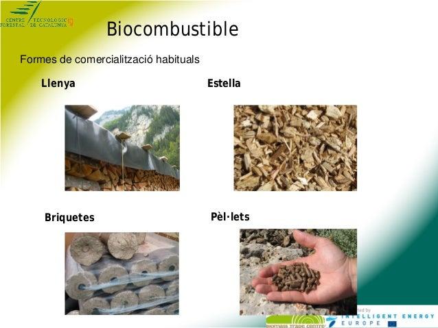 Jornada qualitat i marca setembre 2013 Slide 2