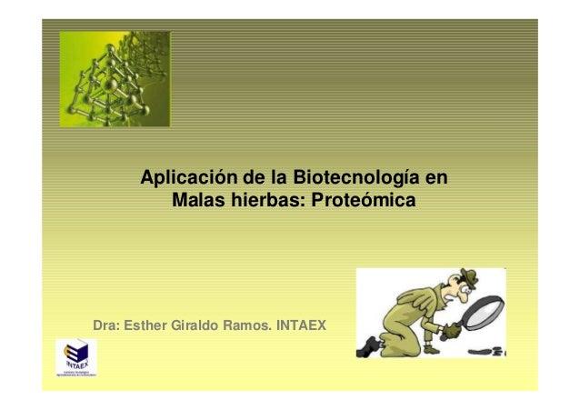 Aplicación de la Biotecnología en         Malas hierbas: ProteómicaDra: Esther Giraldo Ramos. INTAEX