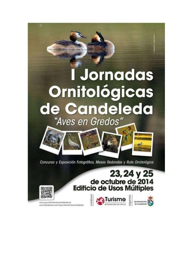 El próximo jueves 23 de octubre comienzan en Candeleda las I Jornadas dedicadas a la  Ornitología que impulsa el Ayuntamie...