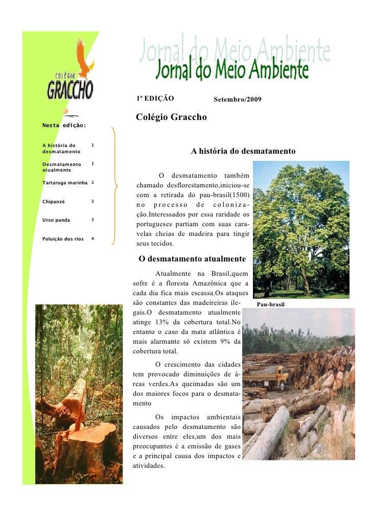 1ª EDIÇÃO                Setembro/2009                          Colégio Graccho Nesta edição:   A história do       1 desm...
