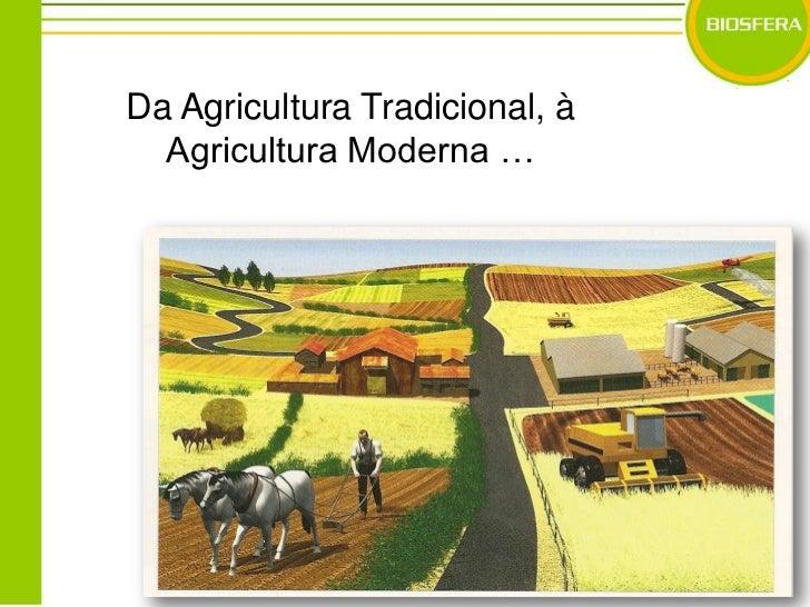 Da Agricultura Tradicional, à Agricultura Moderna …<br />