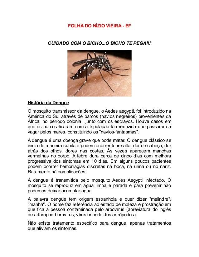 FOLHA DO NÍZIO VIEIRA - EF CUIDADO COM O BICHO...O BICHO TE PEGA!!! História da Dengue O mosquito transmissor da dengue, o...