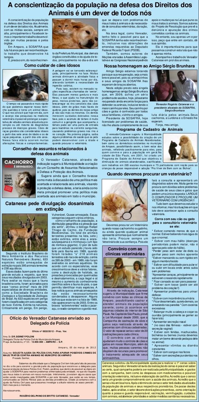 A conscientização da população na defesa dos Direitos dos                  Animais é um dever de todos nós     A conscient...