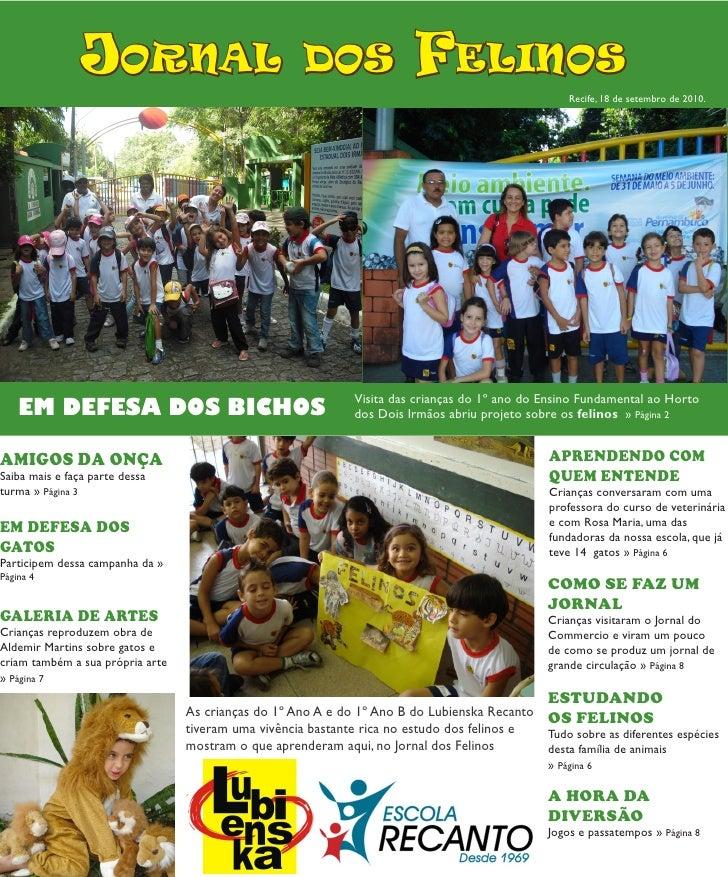 Jornal dos Felinos (Escola Lubienska Recanto)