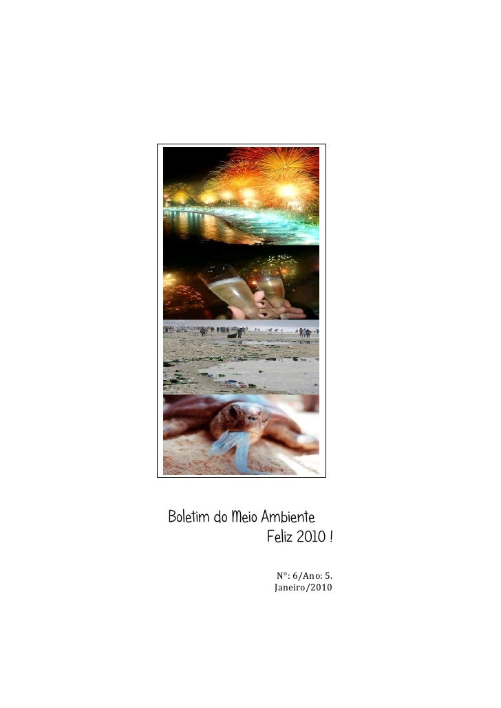 Boletim do Meio Ambiente                  Feliz 2010 !                     N°: 6/Ano: 5.                   Janeiro/2010