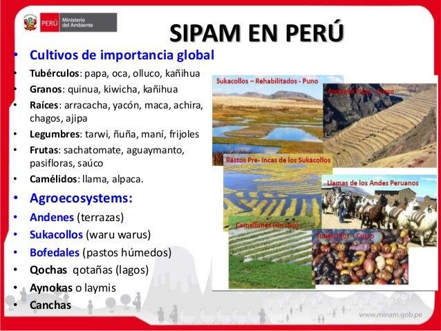 Sipam Giahs Perú De Machu Pichu Al Lago Titicaca