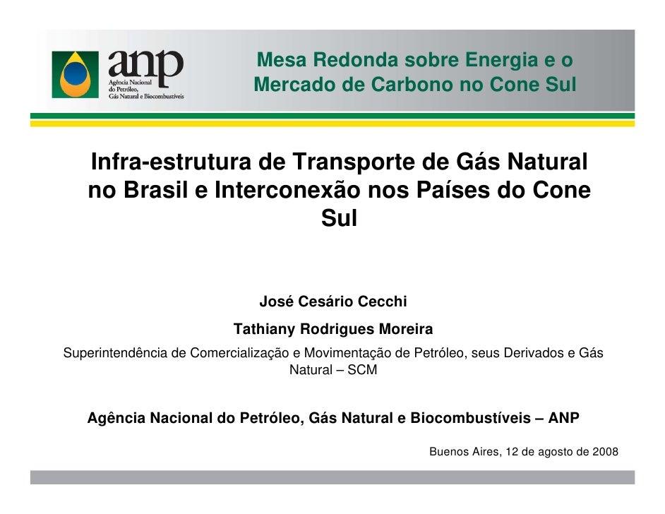 Mesa Redonda sobre Energia e o                              Mercado de Carbono no Cone Sul      Infra-estrutura de Transpo...