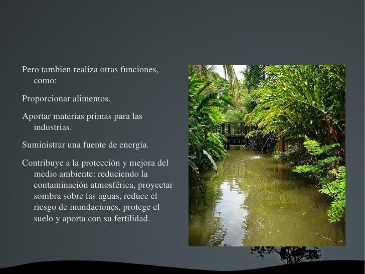 Jose Geografia Slide 3