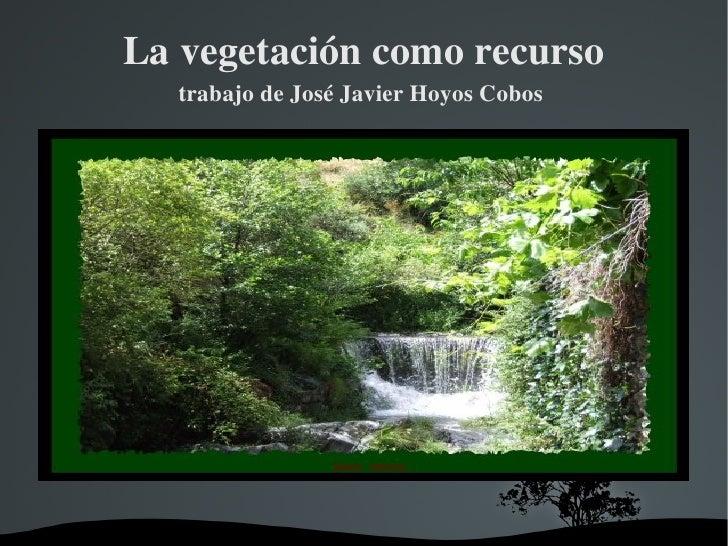La vegetación como recurso trabajo de José Javier Hoyos Cobos