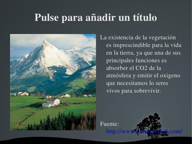 Pulse para añadir un título <ul><li>La existencia de la vegetación es imprescindible para la vida en la tierra, ya que una...