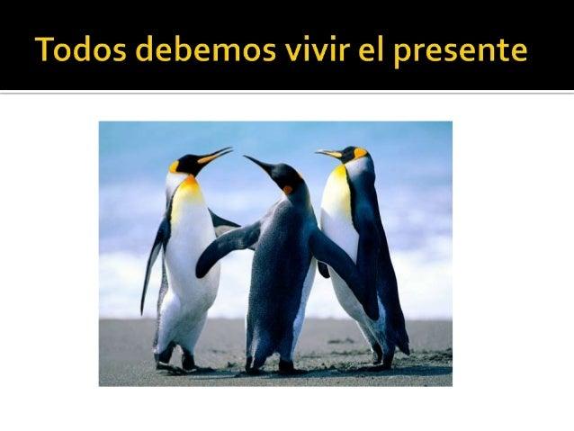 Josegiraldo7c Slide 2