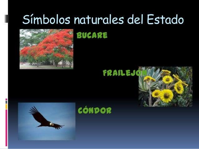 Simbolos Naturales De Merida Venezuela | merida jose infante 3ro a