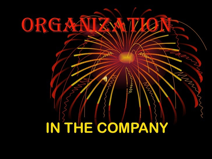 ORGANIzAtION IN THE COMPANY