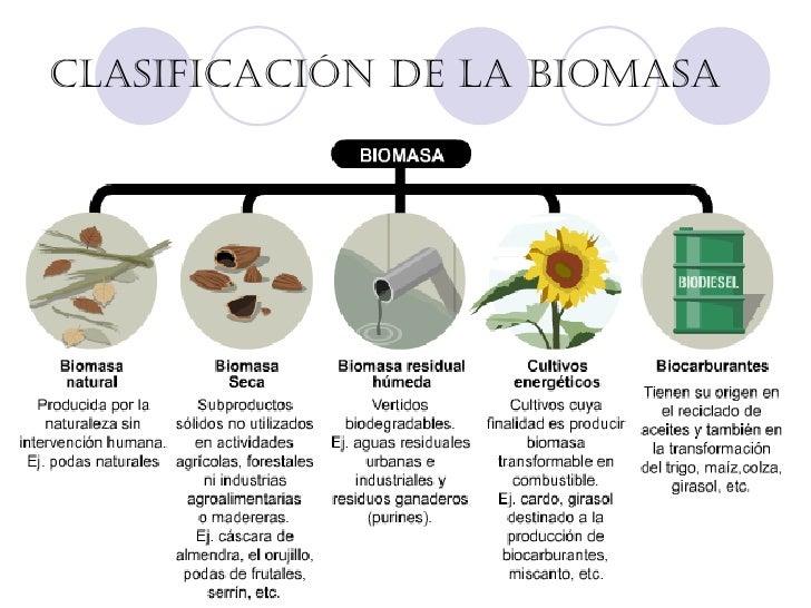 Desventajas de la energia biomasa yahoo dating 9
