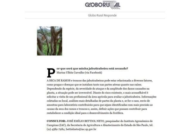 Revista Globo Rural - Edição de Novembro 2016