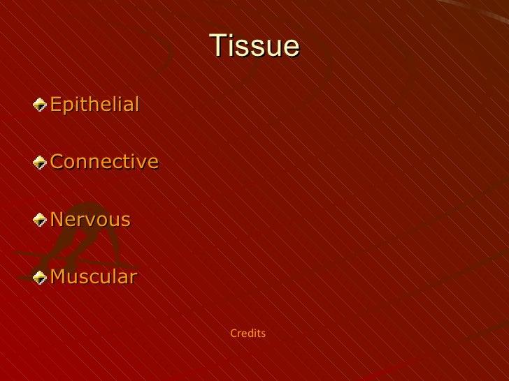 Tissue <ul><li>Epithelial </li></ul><ul><li>Connective   </li></ul><ul><li>Nervous </li></ul><ul><li>Muscular </li></ul>Cr...
