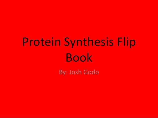 Protein Synthesis Flip Book By: Josh Godo