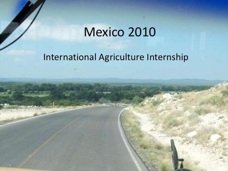 Mexico 2010International Agriculture Internship