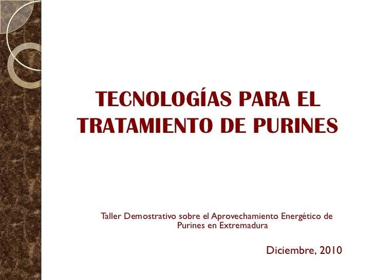 TECNOLOGÍAS PARA ELTRATAMIENTO DE PURINES Taller Demostrativo sobre el Aprovechamiento Energético de                    Pu...