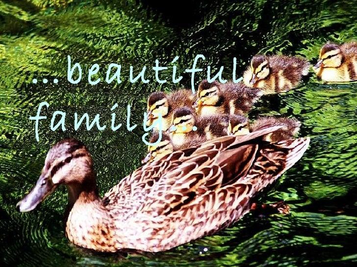 … beautiful family…