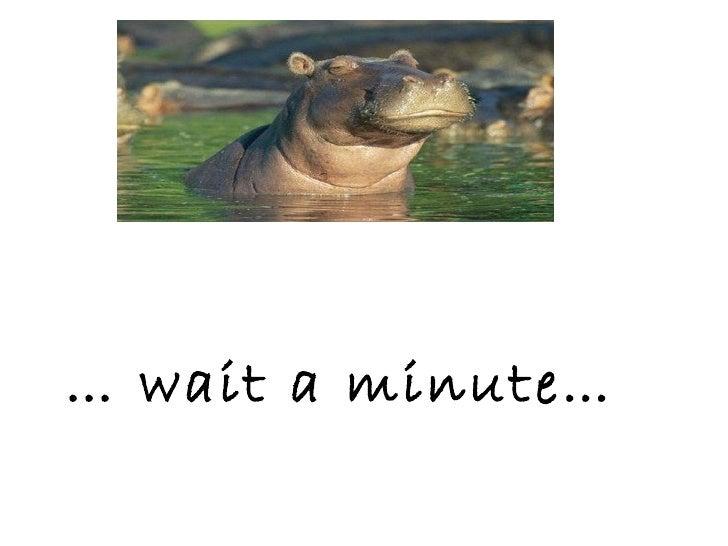 …  wait a minute…
