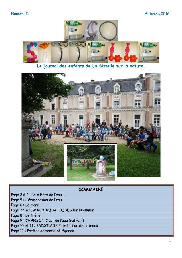 Numéro 11 Automne 2016 1 Le journal des enfants de La Sittelle sur la nature. SOMMAIRE Page 2 à 4 : La « Fête de l'eau » P...