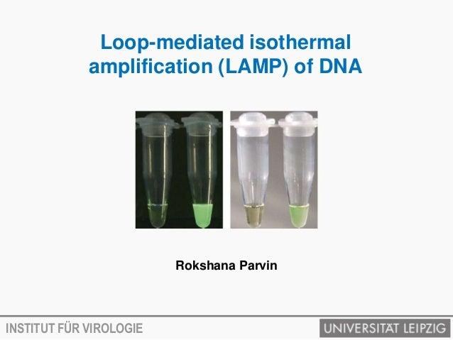 Loop-mediated isothermal             amplification (LAMP) of DNA                         Rokshana ParvinINSTITUT FÜR VIROL...