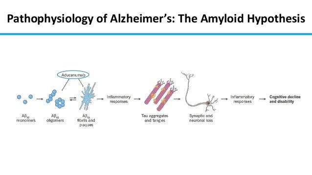 Antibody Aducanumab Reduces Ab Plaques In Alzheimer S Disease