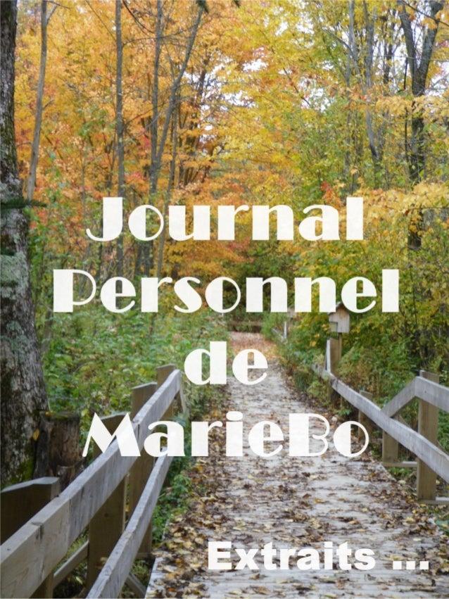 Le Journal Personnel                       Journal Personnel de Mariebo    Extraits    Entre 2001 et 2006, j'ai recopié da...