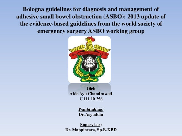 Bologna guidelines for diagnosis and management of adhesive small bowel obstruction (ASBO): 2013 update of the evidence-ba...