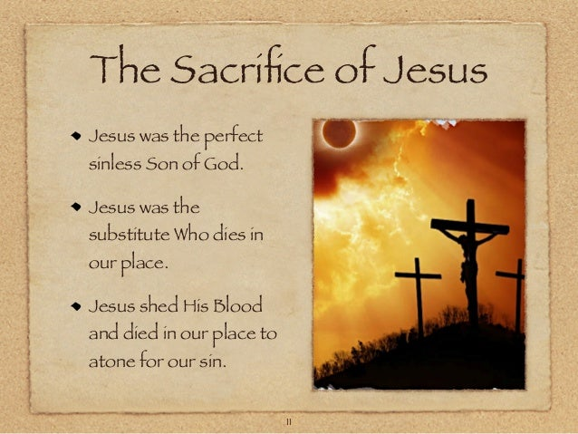 Journey Through The Bible 4 Leviticus Sacrifice For Sin
