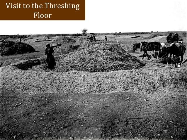Threshing floor ruth meze blog for Threshing floor