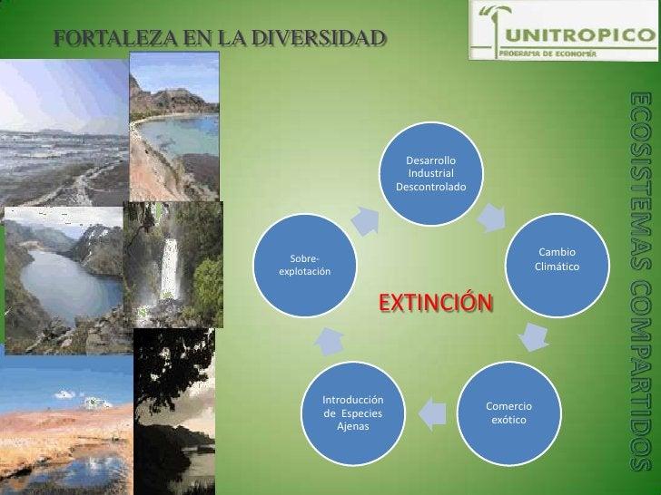 FORTALEZA EN LA DIVERSIDAD<br />ECOSISTEMAS COMPARTIDOS<br />EXTINCIÓN<br />