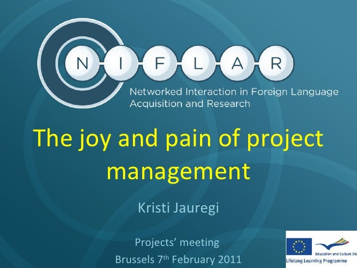 The Joy, Stress, and Value of Project Management
