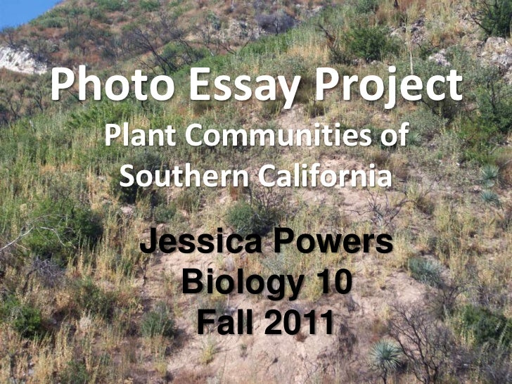 Photo Essay Project  Plant Communities of   Southern California    Jessica Powers      Biology 10       Fall 2011