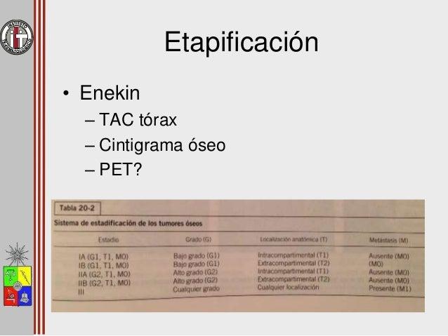 Factores Pronóstico • Etapificación – Metástasis 20 – 30% sobrevida • Mayores de 10 años • Elevación de parámetros inflama...