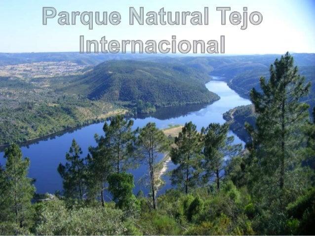  Localização; Relevo; Clima; Flora; Fauna; Hidrologia; Habitats; Património Cultural e Construído; Pontos de Inte...