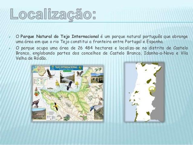  Existência de escarpas fluviais. Os vales encaixados, nomeadamente dos rios Tejo e Erges, possuem considerável valorcén...