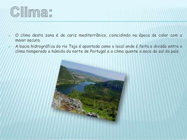  Merecem especial destaque entre as espécies vegetais do Parque Natural do TejoInternacional a azinheira , o carrasco, o ...