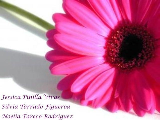 Jessica Pinilla Vivas Silvia Torrado Figueroa Noelia Tareco Rodríguez