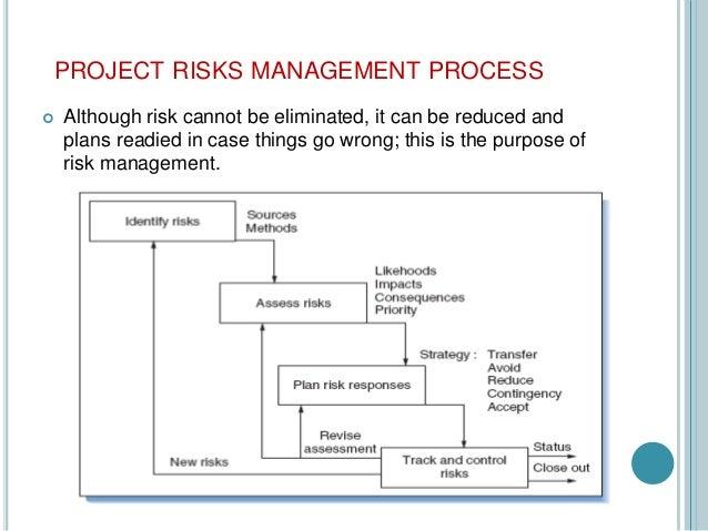 project management risks