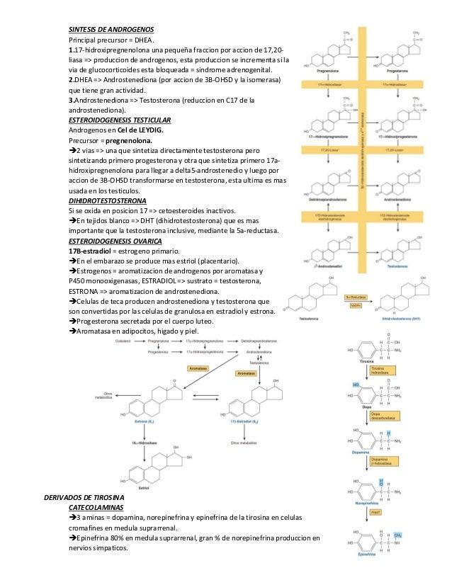 resumen legendario bioquimica