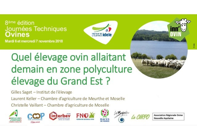 8ème édition Journées Techniques Ovines Mardi 6 et mercredi7 novembre2018 ©Idele Quel élevage ovin allaitant demain en zon...